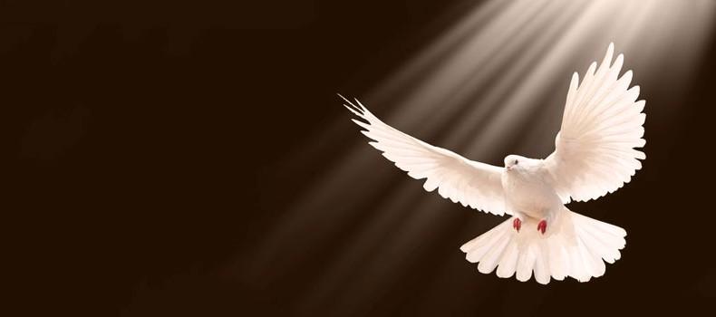 gran-regalo-espiritu-santo-790x350